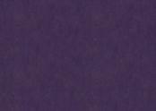3244 purple.jpg