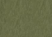 3255 pine forest.jpg
