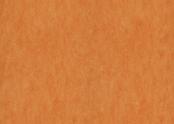 3241 orange sorbet.jpg