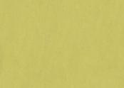 Marmoleum_Fresco-3885_spring_buds.jpg