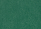 Marmoleum_Fresco-3271_hunter_green.jpg