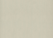 Marmoleum_Fresco-3257_edelweiss.jpg