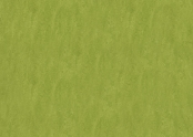 Marmoleum_Fresco-3247_green.jpg