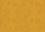 Marmoleum_Fresco-3125_golden_sunset.jpg