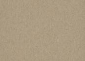 Marmoleum_Terra-5803_weathered_sand.jpg